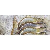 Креветка тигровая  vannamei 16-20 шт/кг. Китай